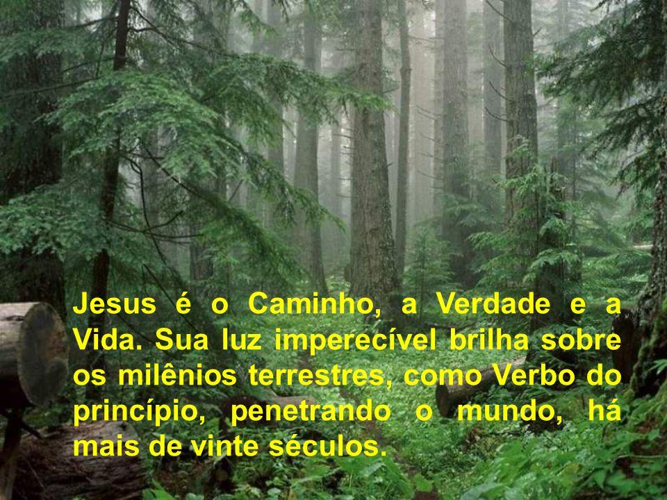 Jesus é o Caminho, a Verdade e a Vida. Sua luz imperecível brilha sobre os milênios terrestres, como Verbo do princípio, penetrando o mundo, há mais d