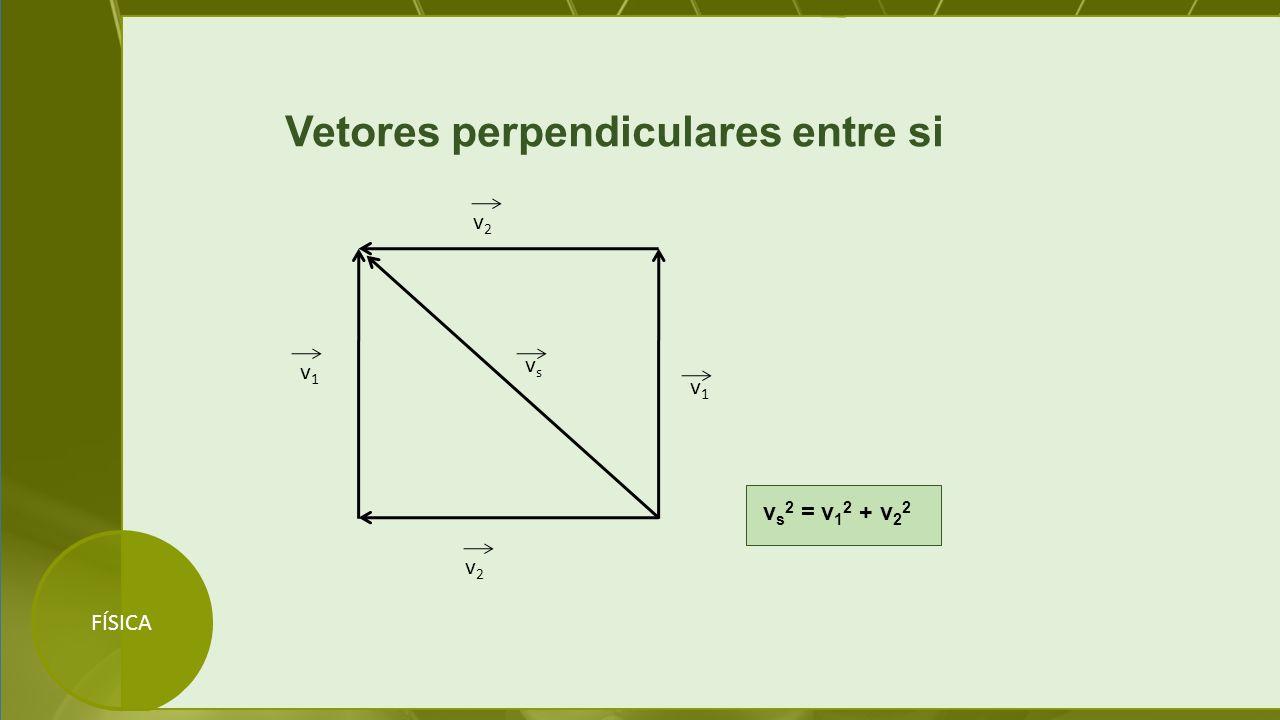FÍSICA Vetores perpendiculares entre si v1v1 v2v2 v2v2 v1v1 vsvs v s 2 = v 1 2 + v 2 2