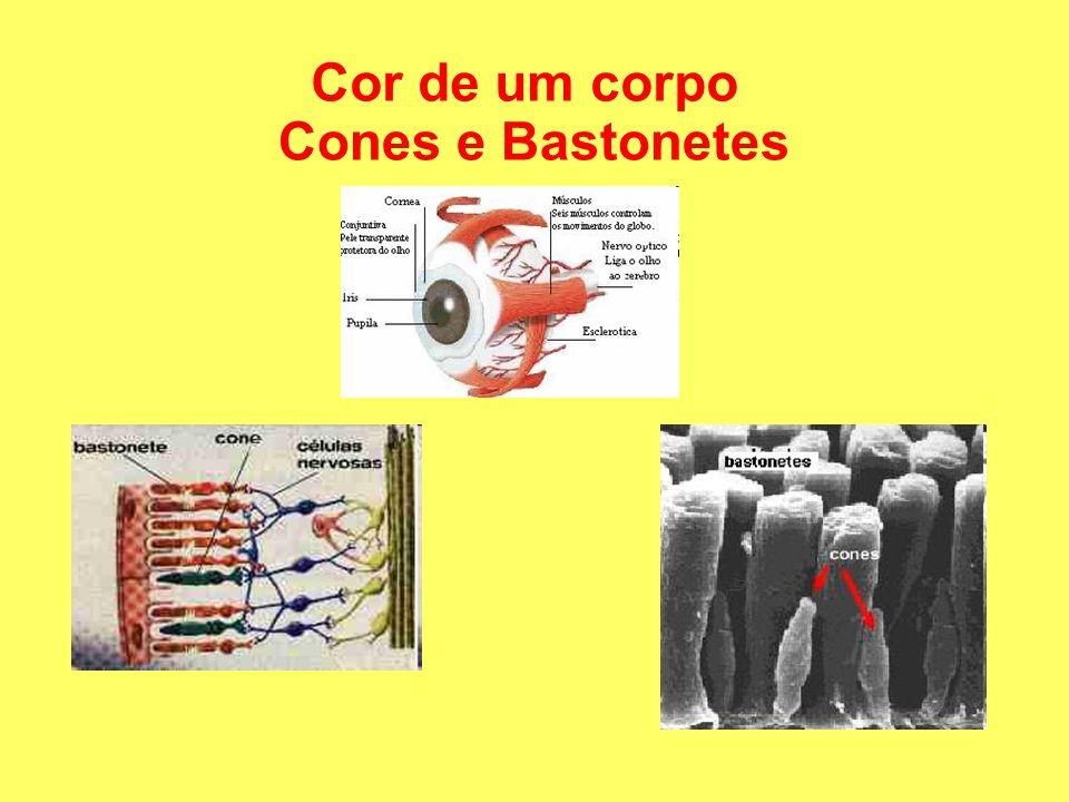 Cones e Bastonetes Cor de um corpo