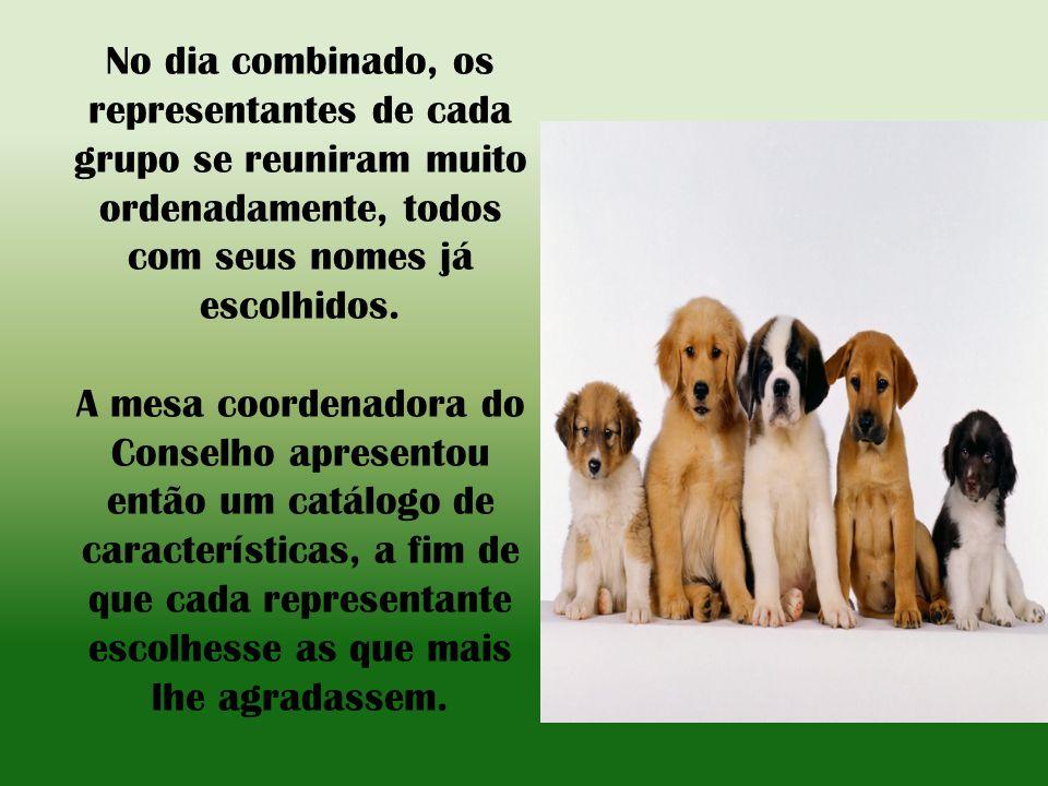 Essa decisão foi considerada de vital importância, pois a humanidade se uniria aos cães na esperança de serem úteis uns aos outros.