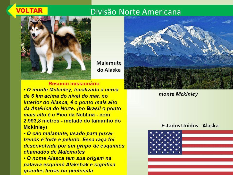 Divisão Norte Americana Resumo missionário O monte Mckinley, localizado a cerca de 6 km acima do nível do mar, no interior do Alasca, é o ponto mais alto da América do Norte.