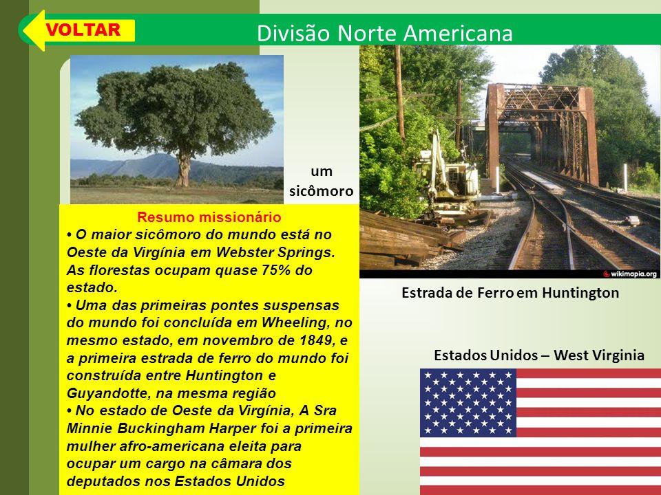 Divisão Norte Americana Resumo missionário O maior sicômoro do mundo está no Oeste da Virgínia em Webster Springs.