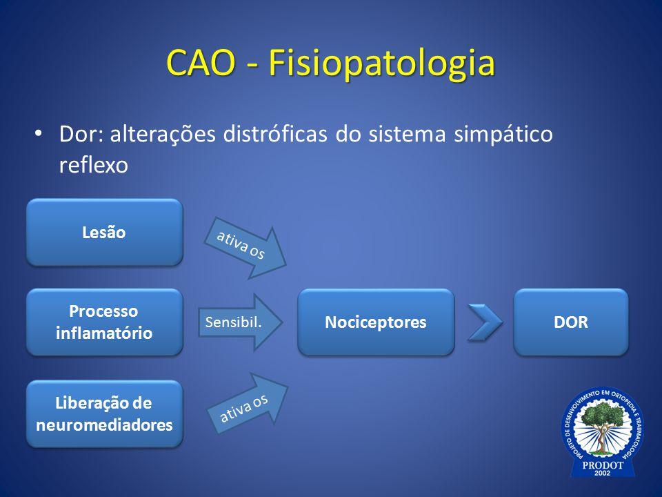 CAO - Fisiopatologia Dor: alterações distróficas do sistema simpático reflexo Nociceptores Lesão Processo inflamatório Liberação de neuromediadores DO