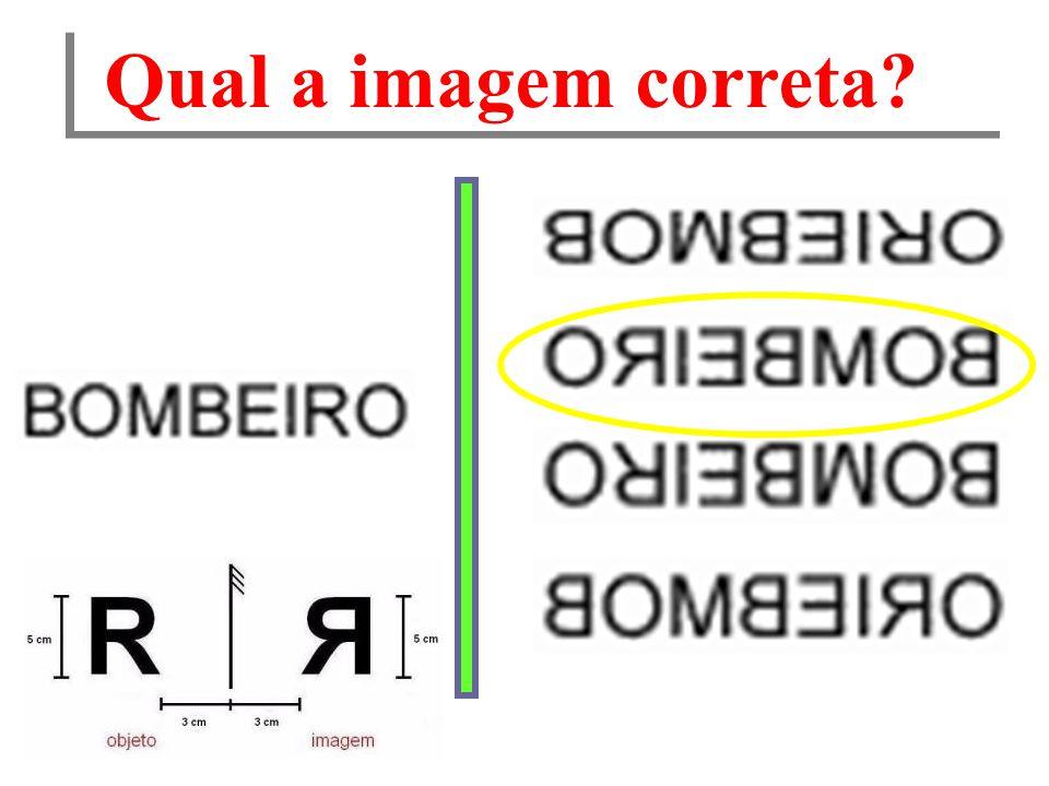 Qual a imagem correta?