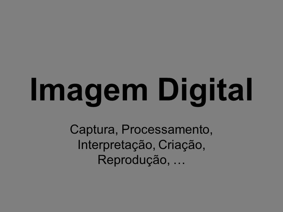 Imagem Digital Captura, Processamento, Interpretação, Criação, Reprodução, …