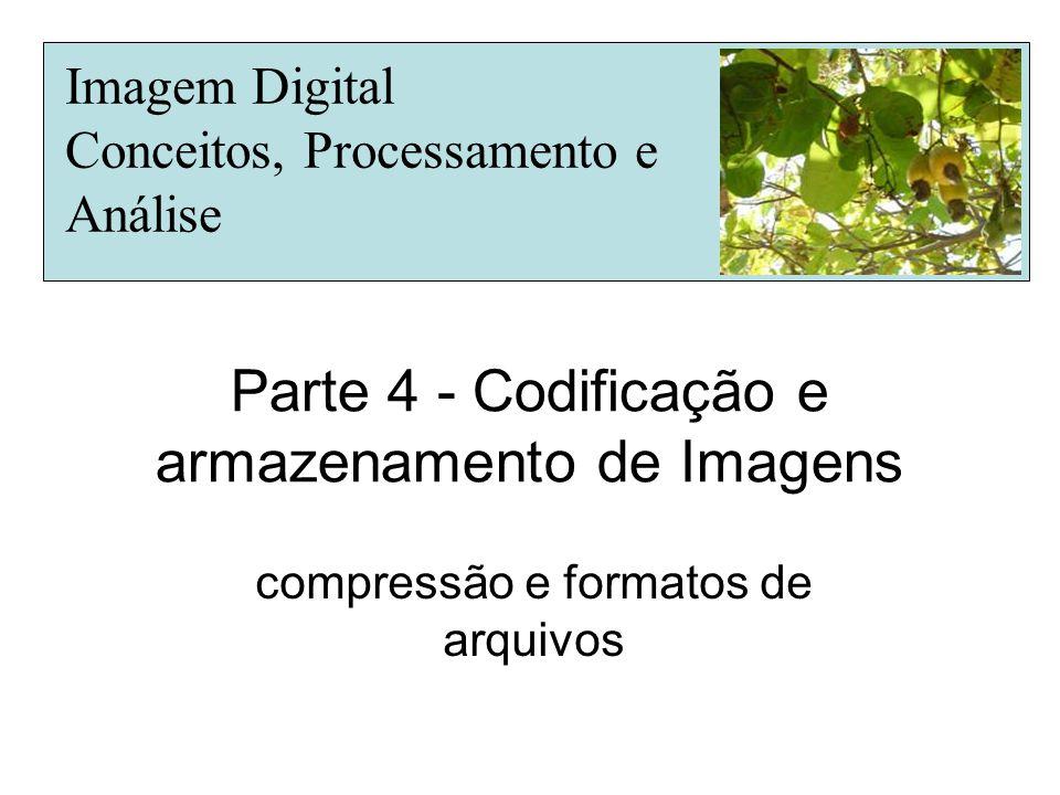Parte 4 - Codificação e armazenamento de Imagens compressão e formatos de arquivos Imagem Digital Conceitos, Processamento e Análise