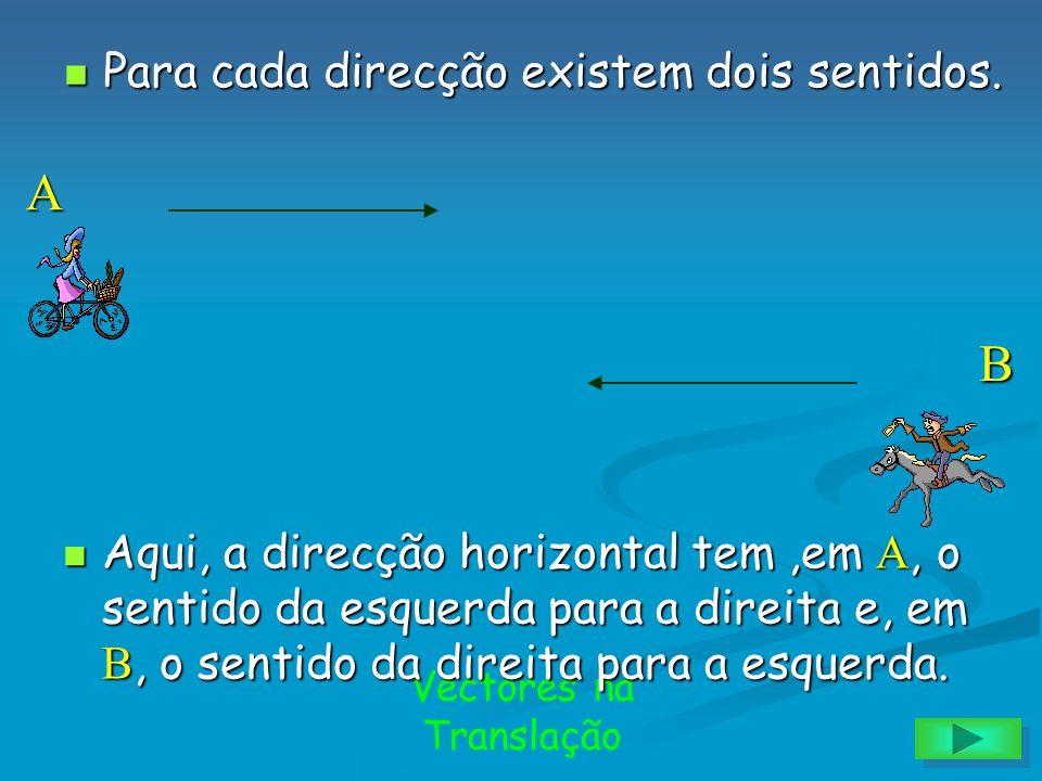 Vectores na Translação Na figura estão representadas cinco rectas e duas direcções. Na figura estão representadas cinco rectas e duas direcções. Direc