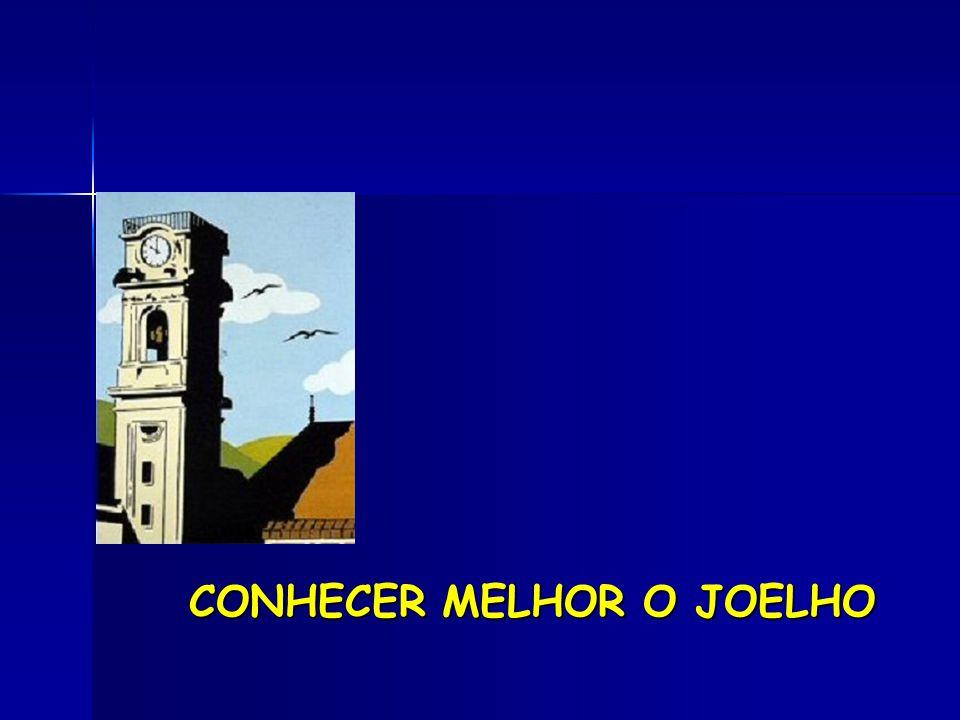 CONHECER MELHOR O JOELHO