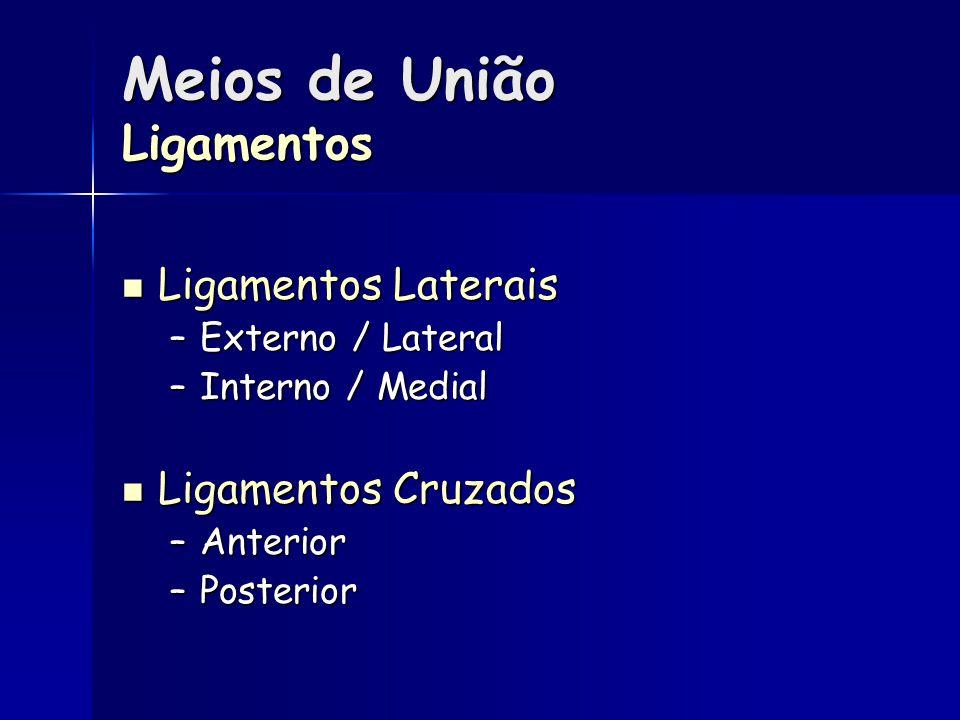 Meios de União Ligamentos Ligamentos Laterais Ligamentos Laterais –Externo / Lateral –Interno / Medial Ligamentos Cruzados Ligamentos Cruzados –Anterior –Posterior