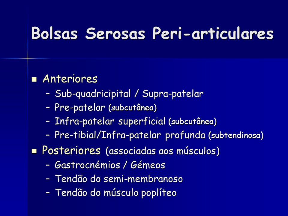 Bolsas Serosas Peri-articulares Anteriores Anteriores –Sub-quadricipital / Supra-patelar –Pre-patelar (subcutânea) –Infra-patelar superficial (subcutânea) –Pre-tibial/Infra-patelar profunda (subtendinosa) Posteriores (associadas aos músculos) Posteriores (associadas aos músculos) –Gastrocnémios / Gémeos –Tendão do semi-membranoso –Tendão do músculo poplíteo