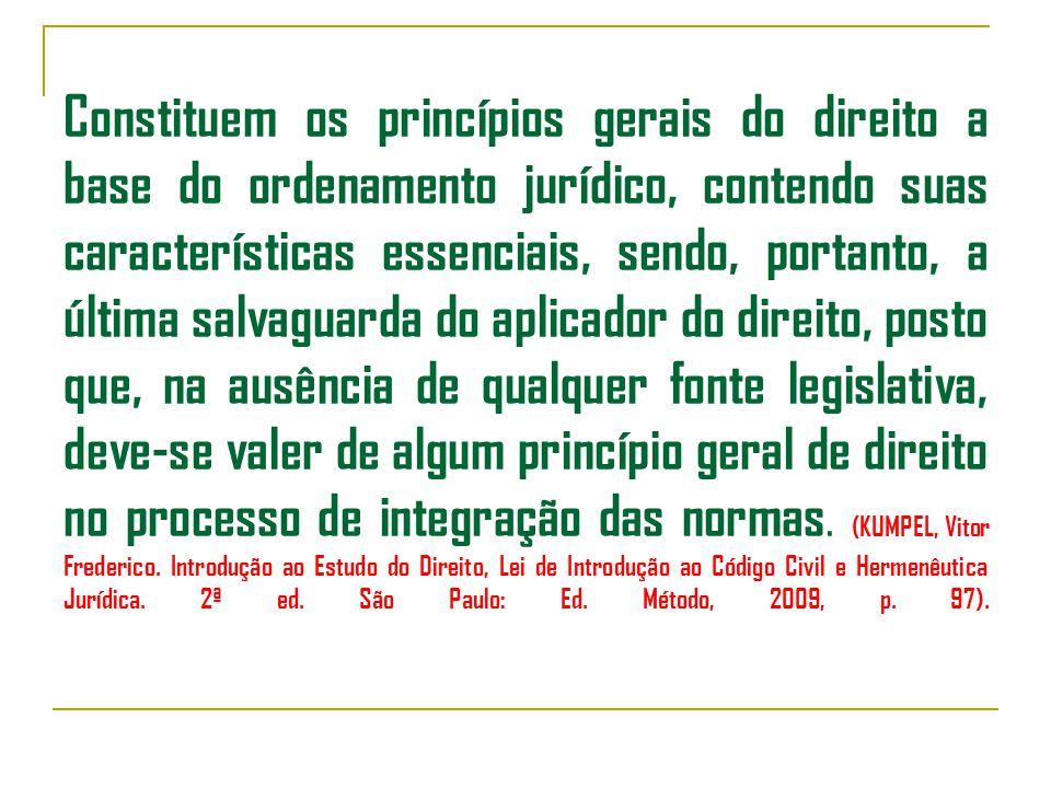 Constituem os princípios gerais do direito a base do ordenamento jurídico, contendo suas características essenciais, sendo, portanto, a última salvaguarda do aplicador do direito, posto que, na ausência de qualquer fonte legislativa, deve-se valer de algum princípio geral de direito no processo de integração das normas.