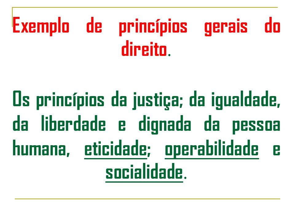 Exemplo de princípios gerais do direito.