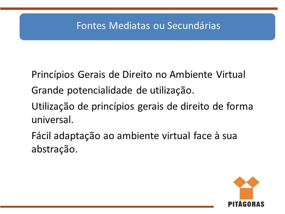 Princípios Gerais de Direito no Ambiente Virtual Grande potencialidade de utilização. Utilização de princípios gerais de direito de forma universal. F