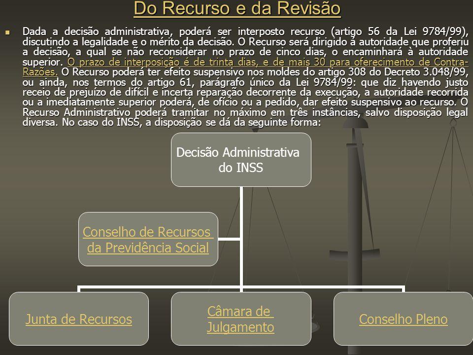 Do Recurso e da Revisão Do Recurso e da Revisão Dada a decisão administrativa, poderá ser interposto recurso (artigo 56 da Lei 9784/99), discutindo a legalidade e o mérito da decisão.