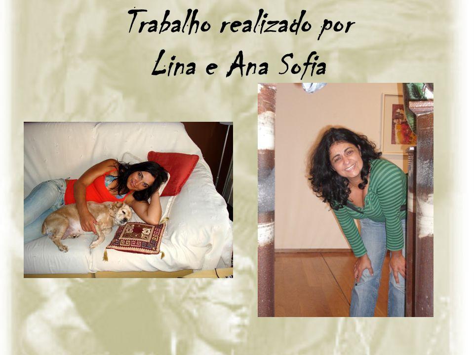 Trabalho realizado por Lina e Ana Sofia