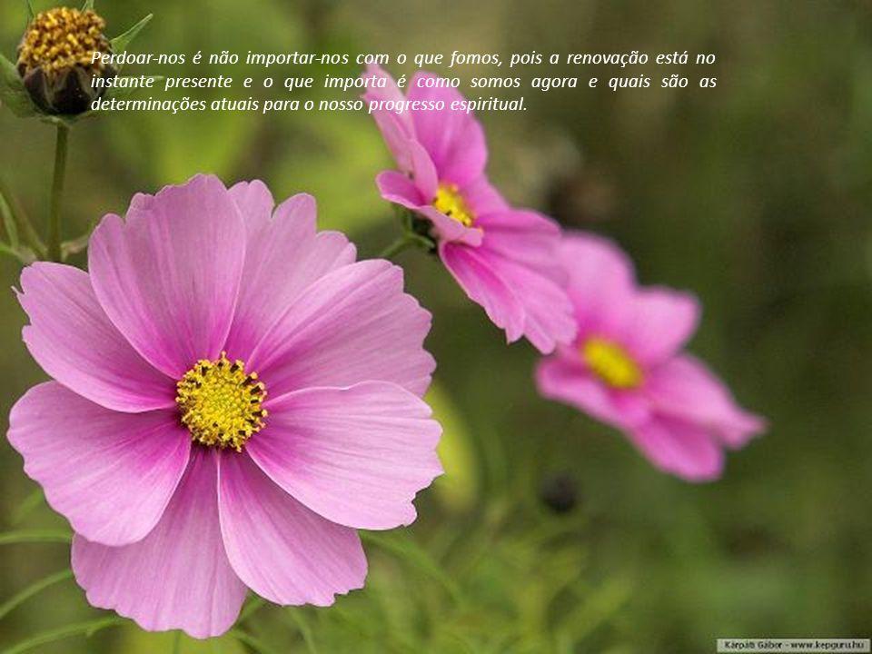 """Perdoar-nos resulta no amor a nós mesmos – o pré-requisito para alcançarmos a plenitude do """"bom viver""""."""