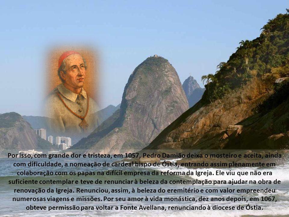 Contudo, a imagem ideal da Santa Igreja ilustrada por Pedro Damião não corresponde - ele bem o sabia - à realidade do seu tempo.