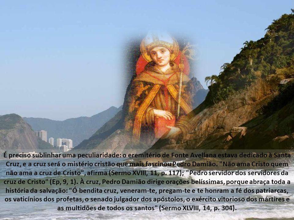 É preciso sublinhar uma peculiaridade: o eremitério de Fonte Avellana estava dedicado à Santa Cruz, e a cruz será o mistério cristão que mais fascinou Pedro Damião.