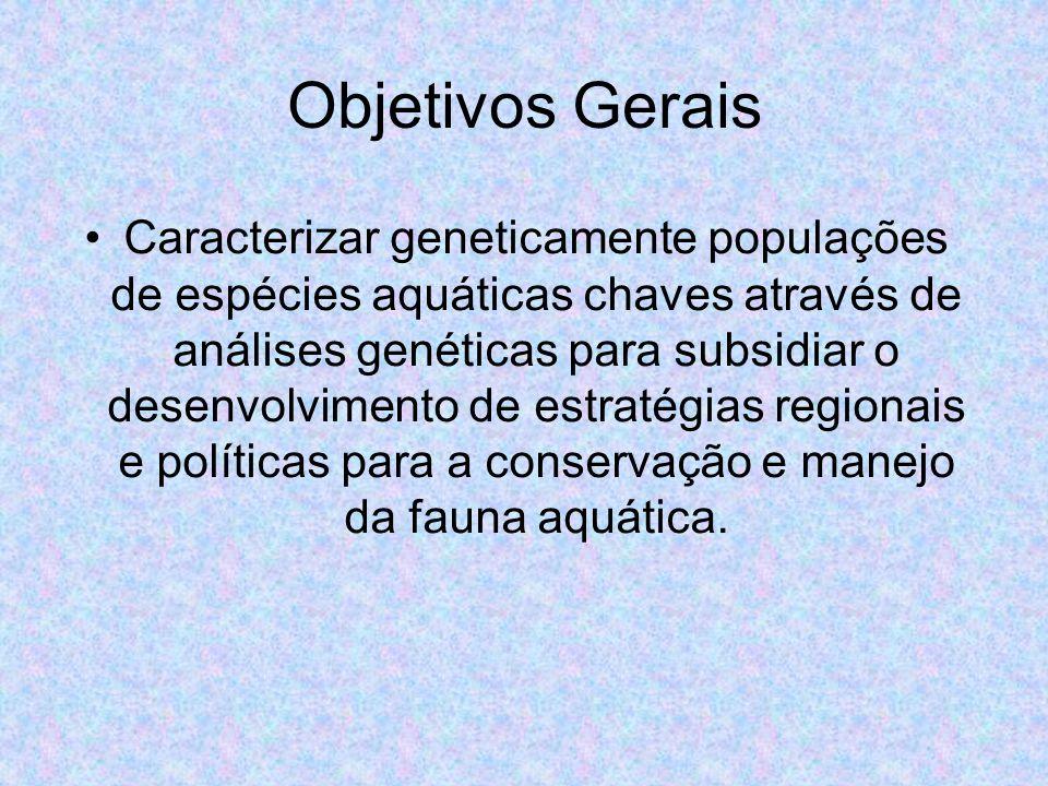 Objetivos Gerais Caracterizar geneticamente populações de espécies aquáticas chaves através de análises genéticas para subsidiar o desenvolvimento de