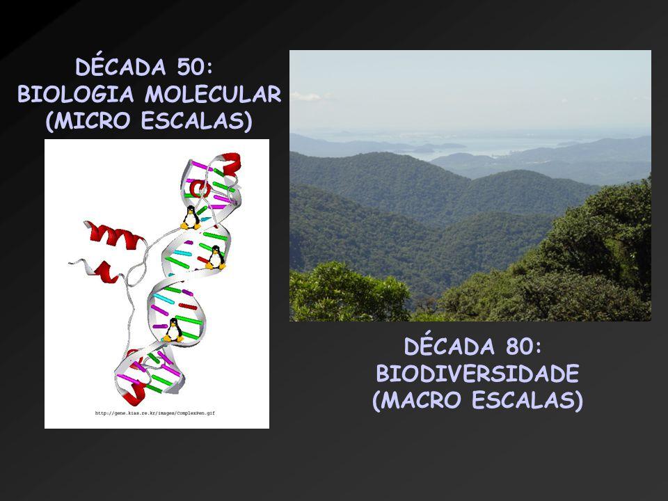 http://usinfo.state.gov/journals/ites/1005/ijee/watson.jpg Ei James, acho que vamos arrasar com esse negócio de DNA.