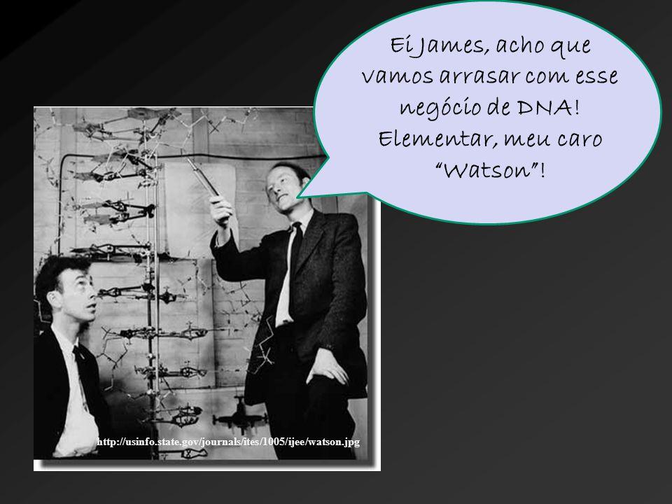 """http://usinfo.state.gov/journals/ites/1005/ijee/watson.jpg Ei James, acho que vamos arrasar com esse negócio de DNA! Elementar, meu caro """"Watson""""!"""
