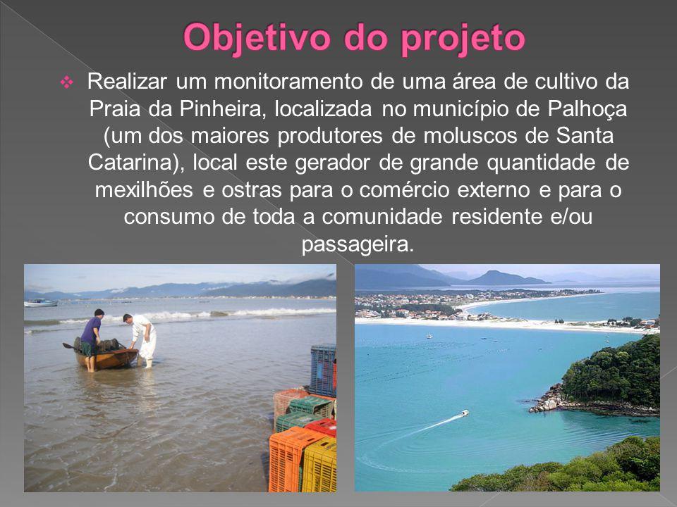  Realizar um monitoramento de uma área de cultivo da Praia da Pinheira, localizada no município de Palhoça (um dos maiores produtores de moluscos de Santa Catarina), local este gerador de grande quantidade de mexilhões e ostras para o comércio externo e para o consumo de toda a comunidade residente e/ou passageira.