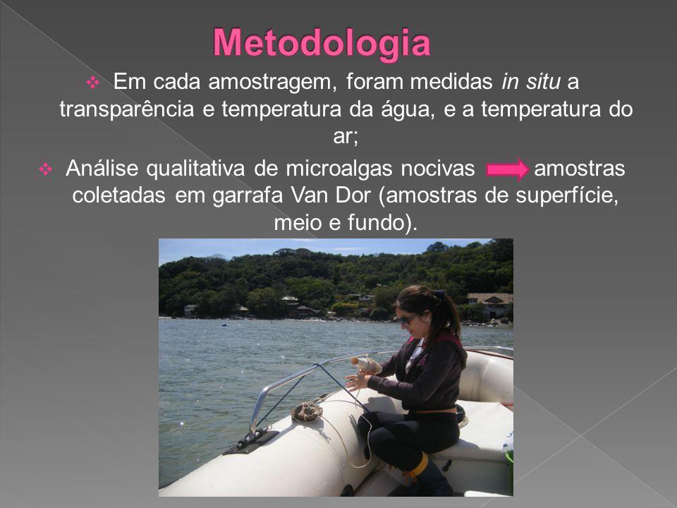  Em cada amostragem, foram medidas in situ a transparência e temperatura da água, e a temperatura do ar;  Análise qualitativa de microalgas nocivas amostras coletadas em garrafa Van Dor (amostras de superfície, meio e fundo).