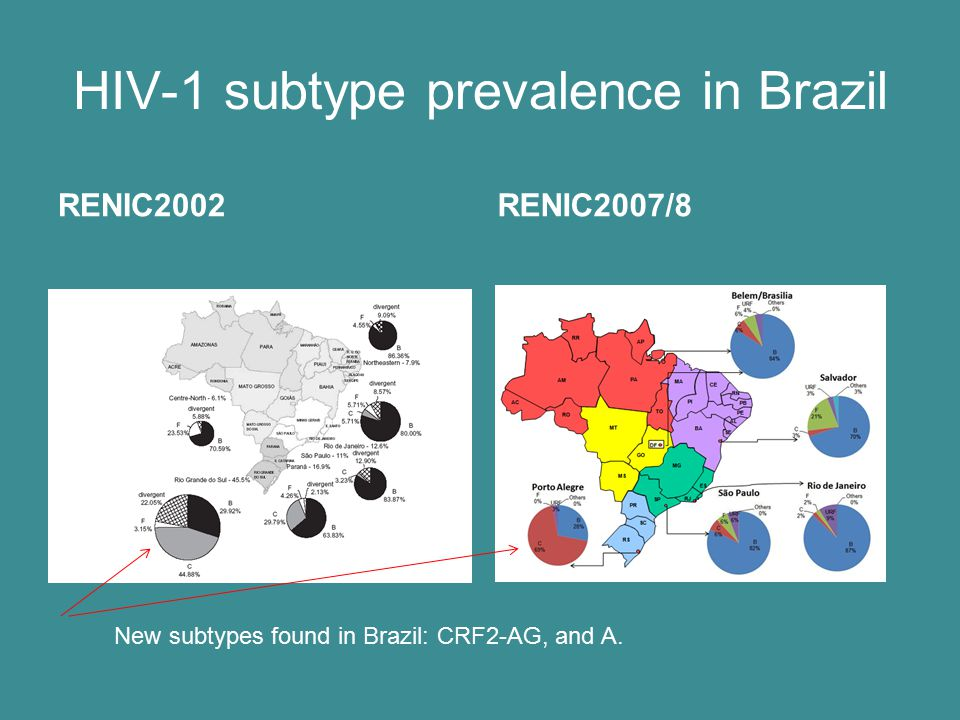 HIV-1 subtype prevalence in Brazil RENIC2002RENIC2007/8 New subtypes found in Brazil: CRF2-AG, and A.