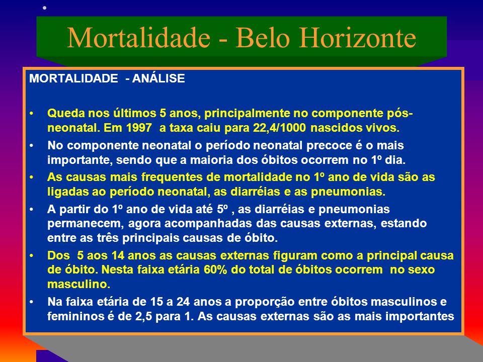 Mortalidade - Belo Horizonte MORTALIDADE - ANÁLISE Queda nos últimos 5 anos, principalmente no componente pós- neonatal. Em 1997 a taxa caiu para 22,4