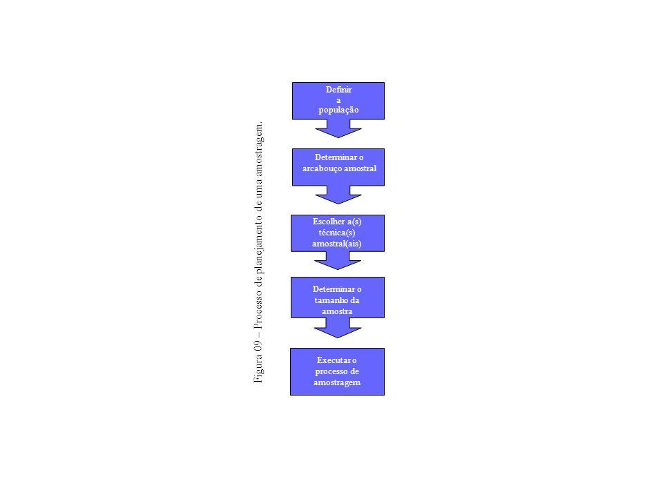 Determinar o arcabouço amostral Escolher a(s) técnica(s) amostral(ais) Executar o processo de amostragem Determinar o tamanho da amostra Definir a pop