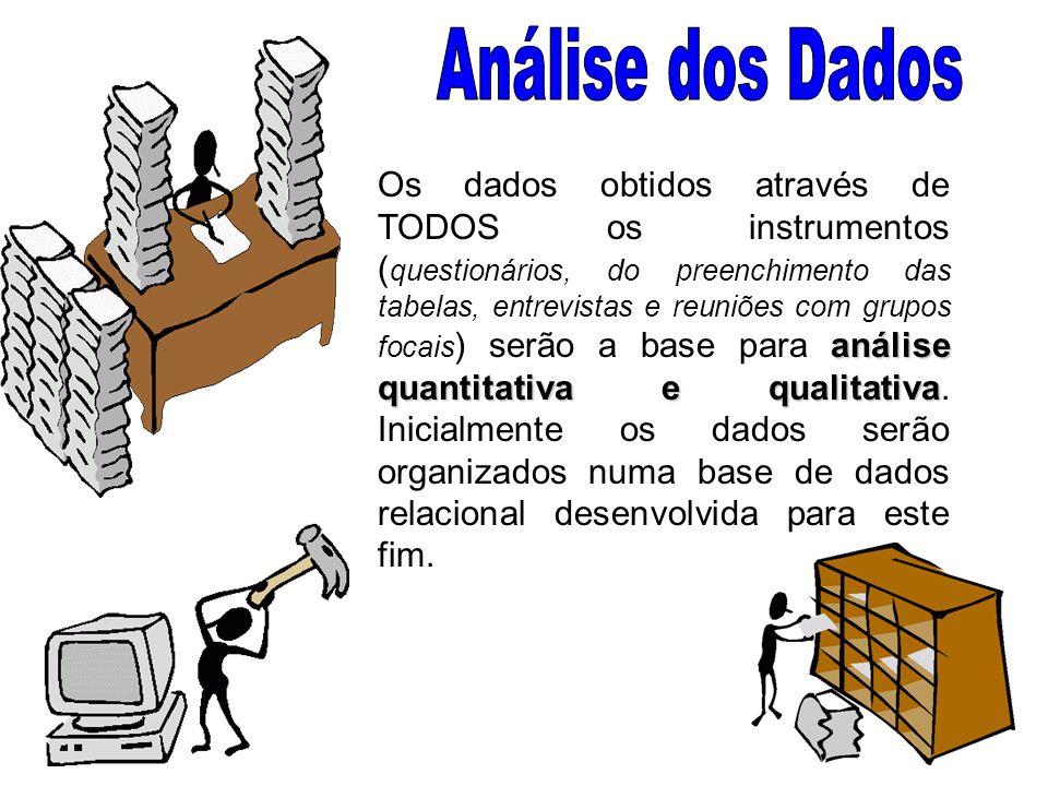 análise quantitativa e qualitativa Os dados obtidos através de TODOS os instrumentos ( questionários, do preenchimento das tabelas, entrevistas e reuniões com grupos focais ) serão a base para análise quantitativa e qualitativa.