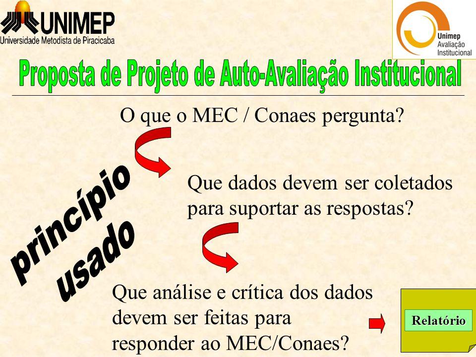 Que análise e crítica dos dados devem ser feitas para responder ao MEC/Conaes.