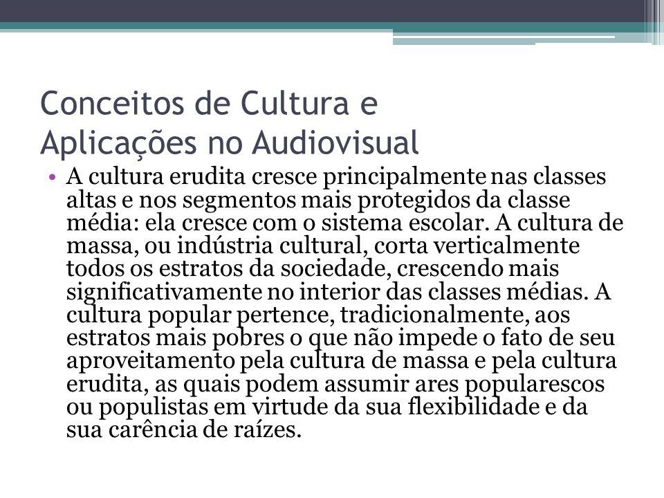 Conceitos de Cultura e Aplicações no Audiovisual A cultura erudita cresce principalmente nas classes altas e nos segmentos mais protegidos da classe m