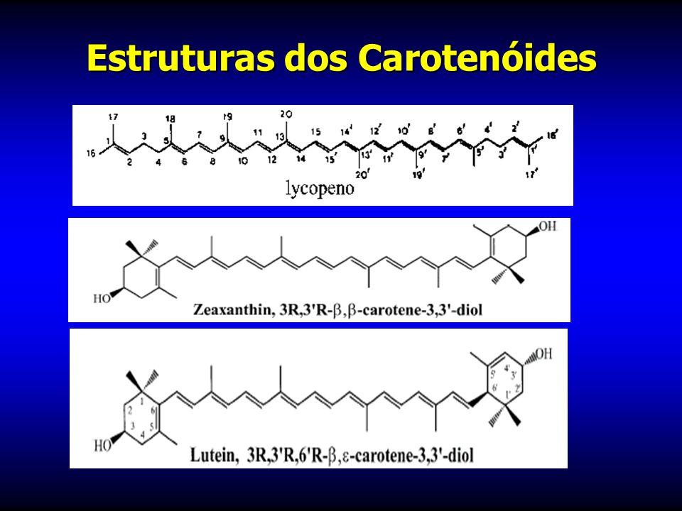 CAROTENOIDES CAROTENOIDES β -caroteno: frutas e hortaliças amarelas e vegetais verdes folhosos Zeaxantina e luteína: couve e espinafre Licopeno: tomat