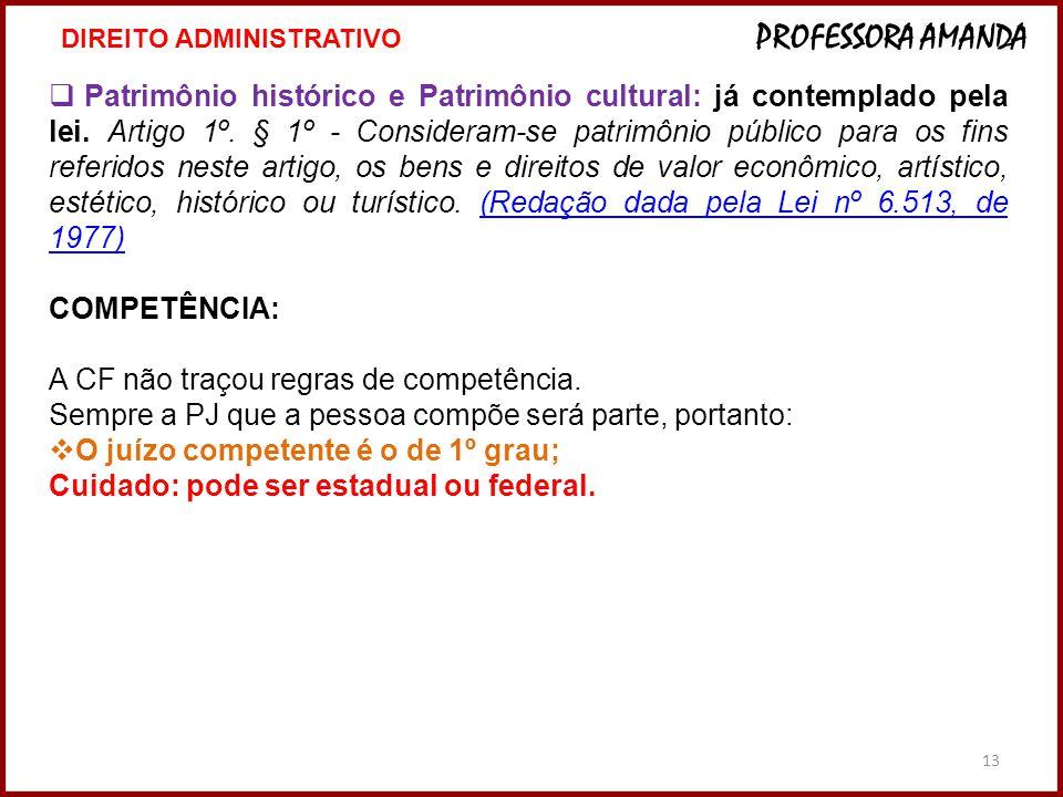 13  Patrimônio histórico e Patrimônio cultural: já contemplado pela lei. Artigo 1º. § 1º - Consideram-se patrimônio público para os fins referidos ne
