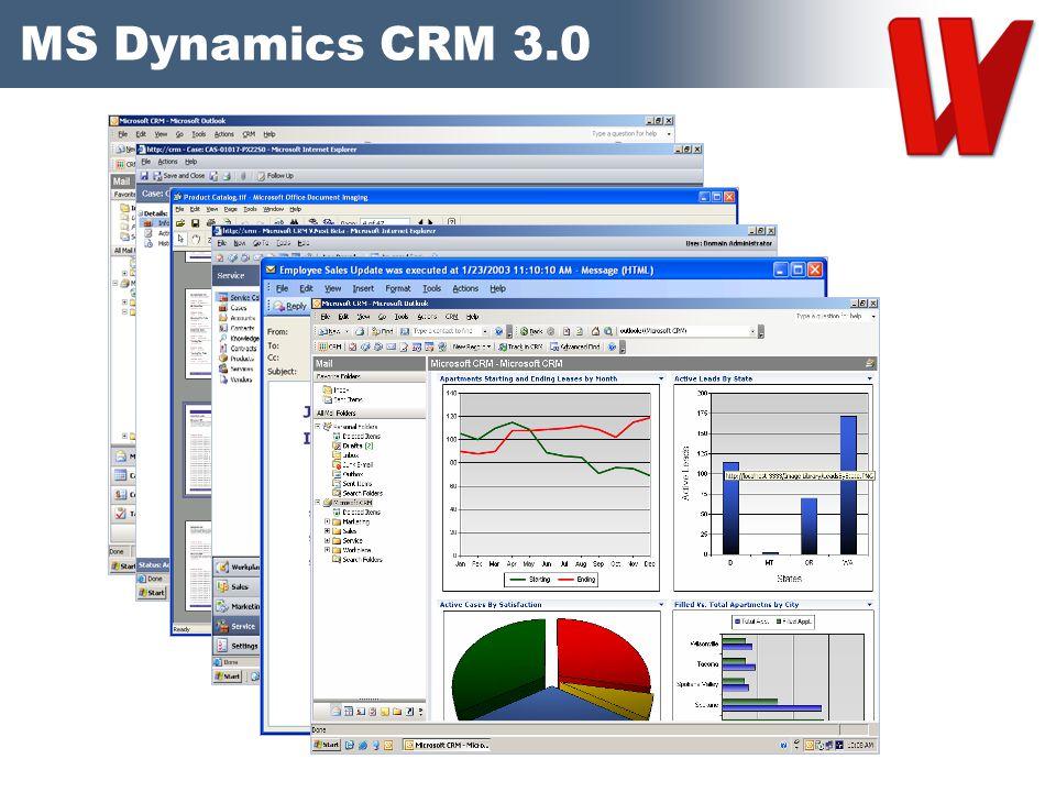 MS Dynamics CRM 3.0