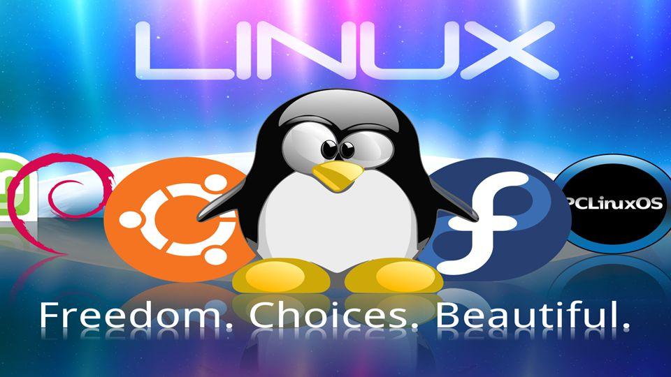 Teve início em 1991, Criado pelo jovem Linus Torvalds Foi baseado no Unix Foi criado para ser um Sistema Operacional mais leve que o Unix Um grande diferencial foi a forma colaborativa como foi idealizada.