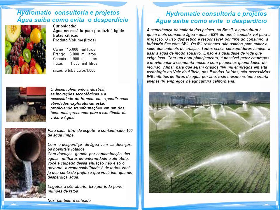 Curiosidade: Água necessária para produzir 1 kg de frutas citricas Produto Volume (litros) Carne 15.000 mil litros Frango 6.000 mil litros Cereais 1.5