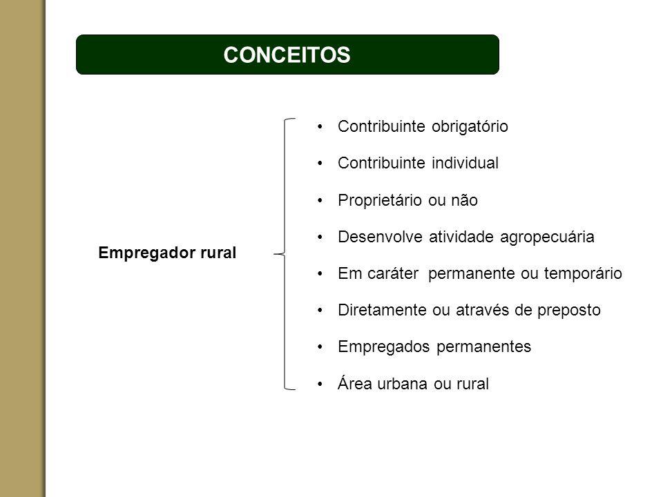 ESPAÇO RESERVADO PARA O NOME DO PROJETO | TÓPICO CONCEITOS Empregador rural Desenvolve atividade agropecuária Contribuinte individual Proprietário ou