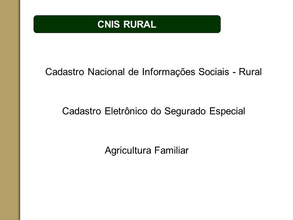 ESPAÇO RESERVADO PARA O NOME DO PROJETO | TÓPICO CNIS RURAL Cadastro Eletrônico do Segurado Especial Cadastro Nacional de Informações Sociais - Rural