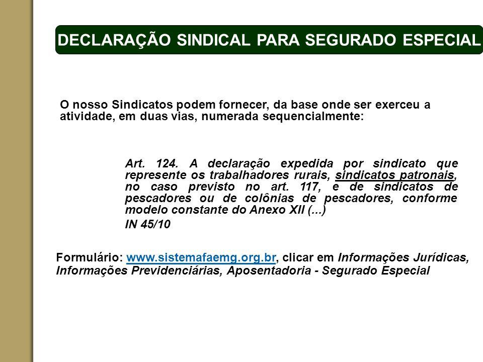 ESPAÇO RESERVADO PARA O NOME DO PROJETO | TÓPICO DECLARAÇÃO SINDICAL PARA SEGURADO ESPECIAL Formulário: www.sistemafaemg.org.br, clicar em Informações