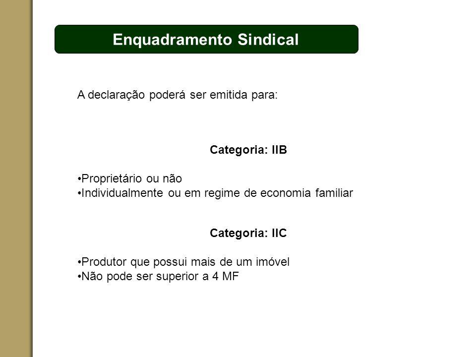 ESPAÇO RESERVADO PARA O NOME DO PROJETO | TÓPICO Enquadramento Sindical A declaração poderá ser emitida para: Categoria: IIB Proprietário ou não Indiv