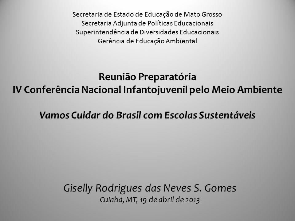 Reunião Preparatória IV Conferência Nacional Infantojuvenil pelo Meio Ambiente Vamos Cuidar do Brasil com Escolas Sustentáveis Secretaria de Estado de