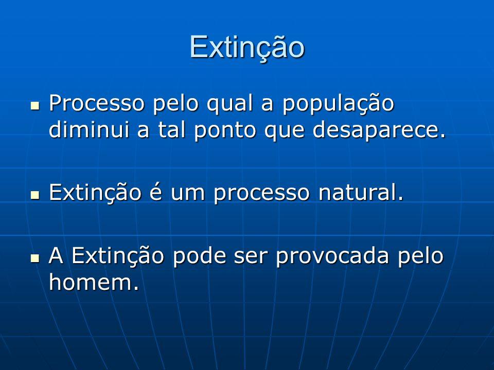 Extinção Processo pelo qual a população diminui a tal ponto que desaparece. Processo pelo qual a população diminui a tal ponto que desaparece. Extinçã