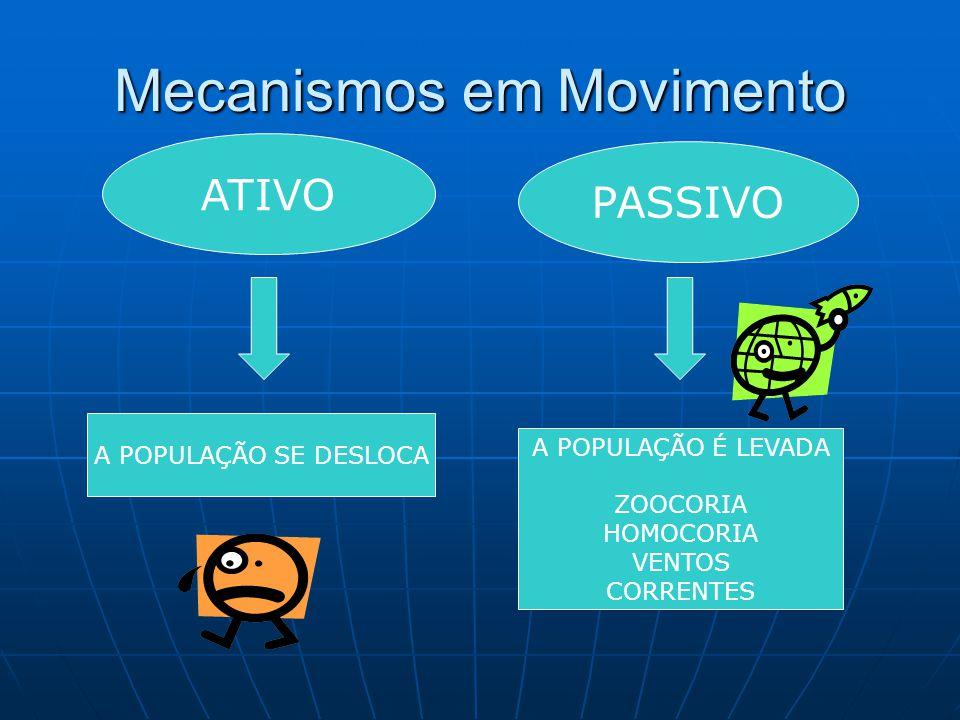 Mecanismos em Movimento ATIVO PASSIVO A POPULAÇÃO SE DESLOCA A POPULAÇÃO É LEVADA ZOOCORIA HOMOCORIA VENTOS CORRENTES