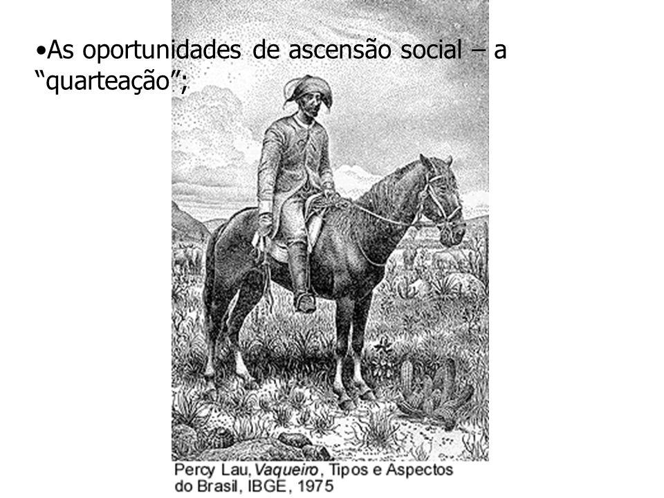 """As oportunidades de ascensão social – a """"quarteação"""";"""