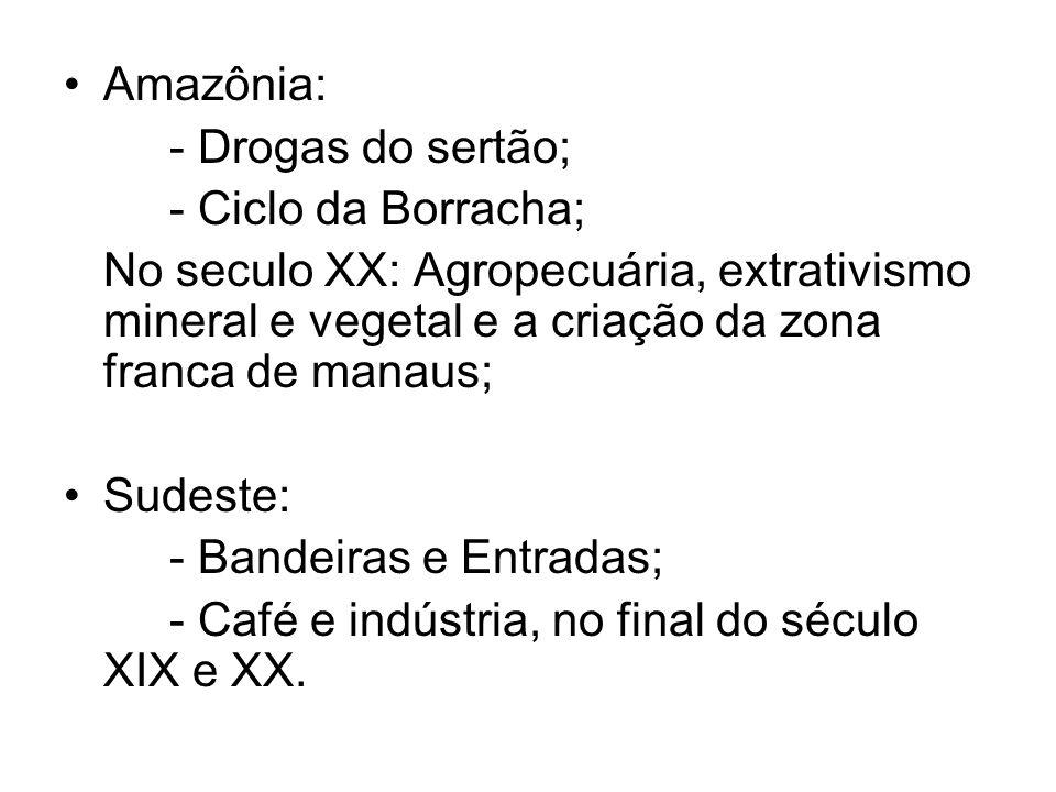 Amazônia: - Drogas do sertão; - Ciclo da Borracha; No seculo XX: Agropecuária, extrativismo mineral e vegetal e a criação da zona franca de manaus; Sudeste: - Bandeiras e Entradas; - Café e indústria, no final do século XIX e XX.