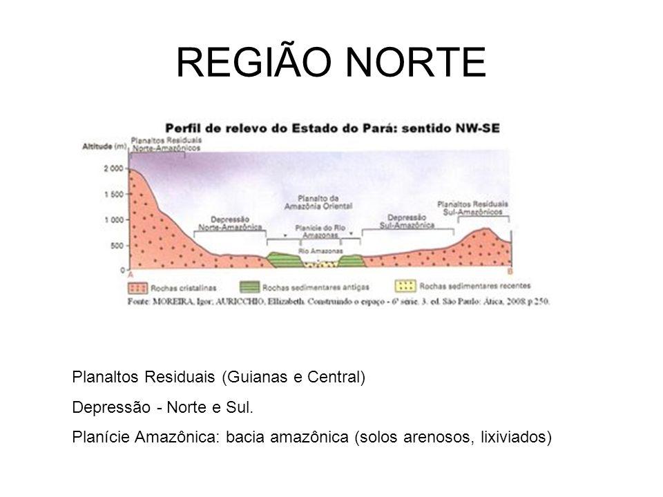 REGIÃO NORTE Planaltos Residuais (Guianas e Central) Depressão - Norte e Sul. Planície Amazônica: bacia amazônica (solos arenosos, lixiviados)
