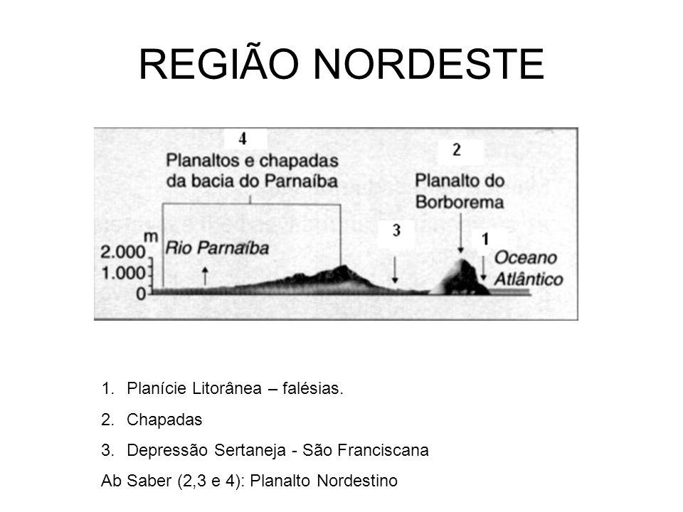 REGIÃO NORDESTE 1.Planície Litorânea – falésias. 2.Chapadas 3.Depressão Sertaneja - São Franciscana Ab Saber (2,3 e 4): Planalto Nordestino