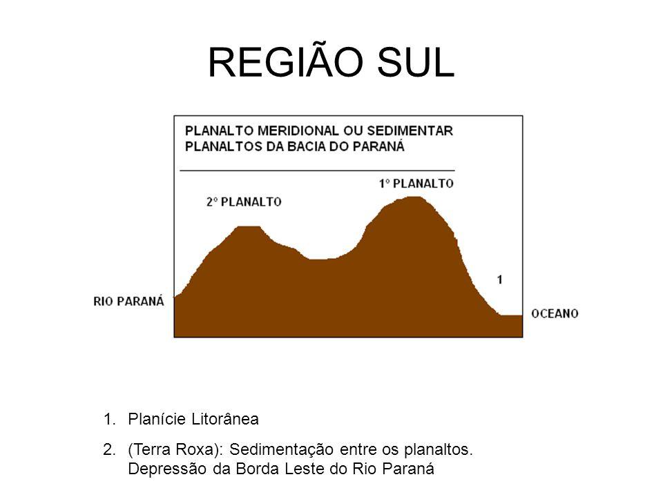 REGIÃO SUL 1.Planície Litorânea 2.(Terra Roxa): Sedimentação entre os planaltos. Depressão da Borda Leste do Rio Paraná